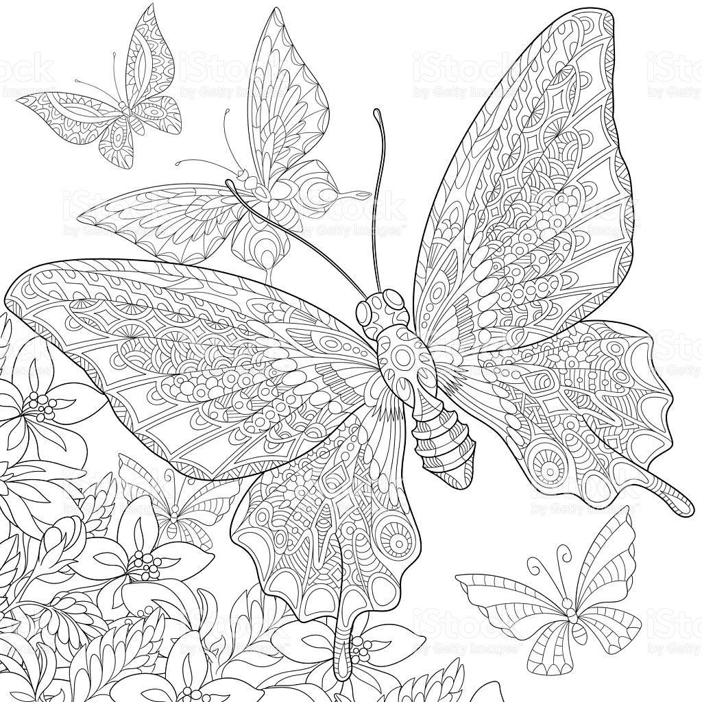 Hand Drawn Stylized Five Cartoon Butterflies Flying Around Flowers Malbuch Vorlagen Ausmalbilder Schmetterling Mandala Ausmalen