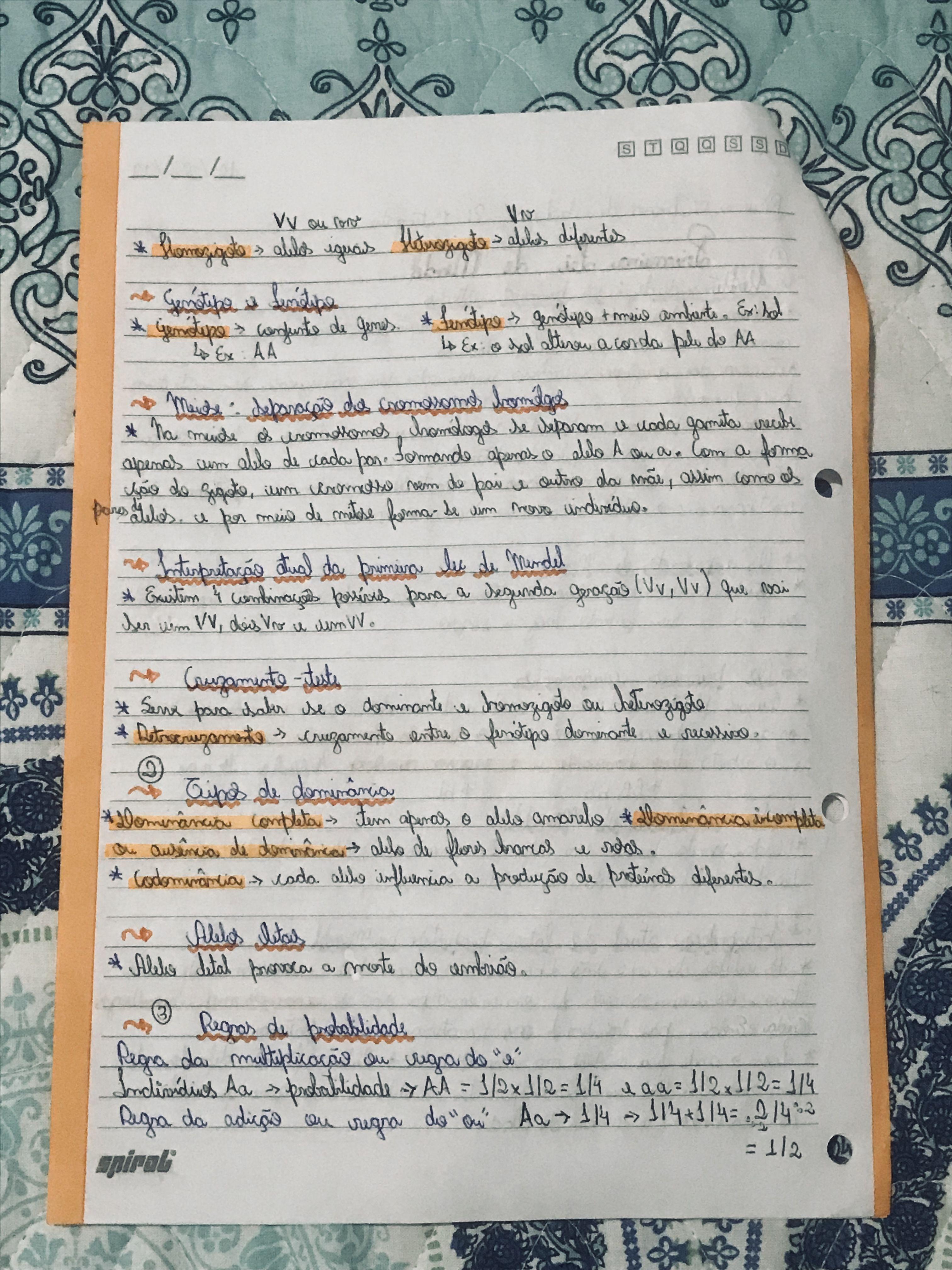 Materia Primeira E Segunda Lei De Mendel Parte 2 Com Imagens