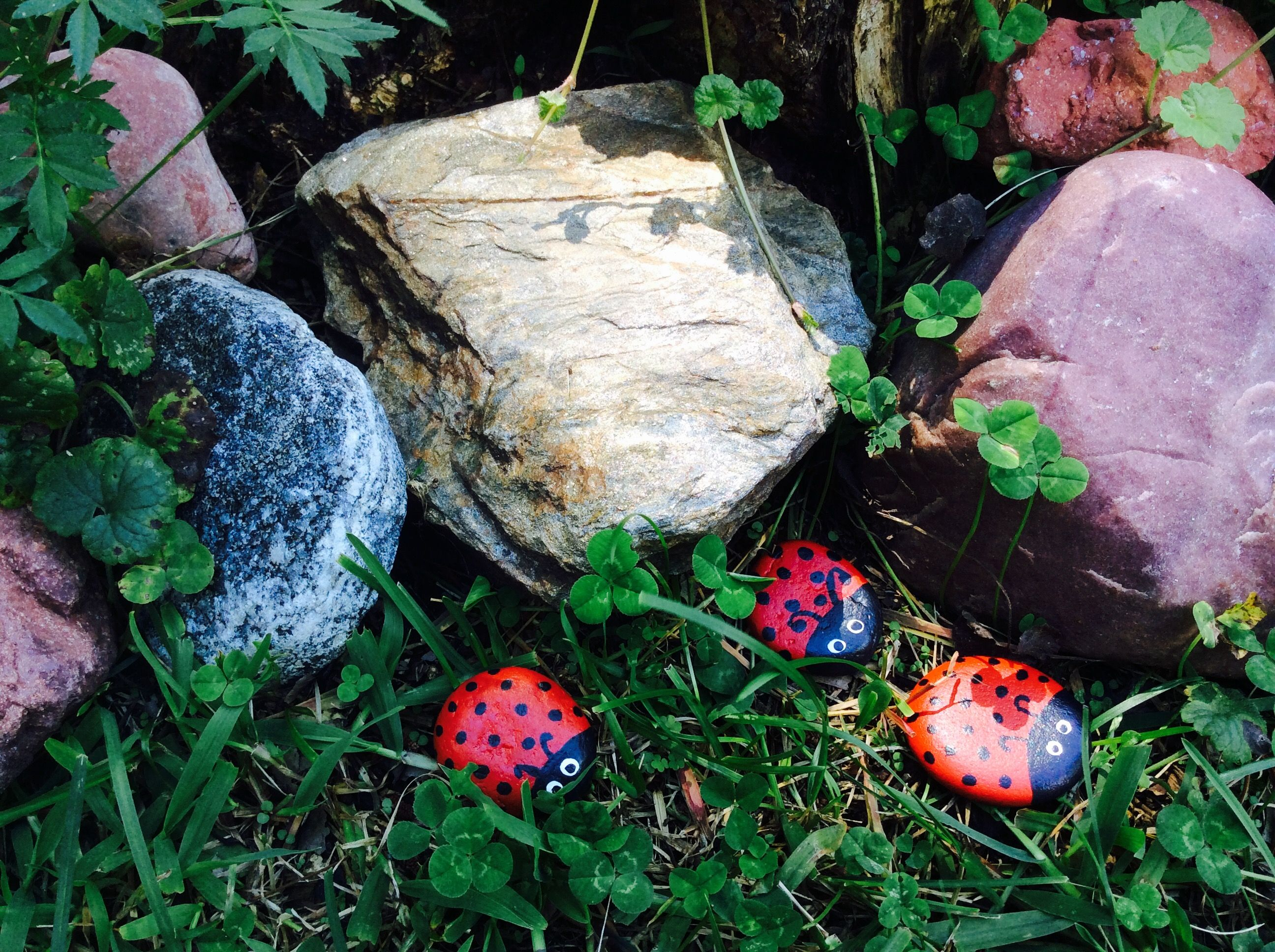 Ladybug painted rocks stones .. easy and fun for your garden. Garden ...