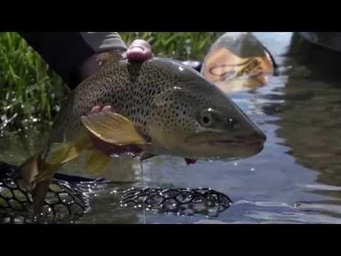 Summer in Montana - YouTube