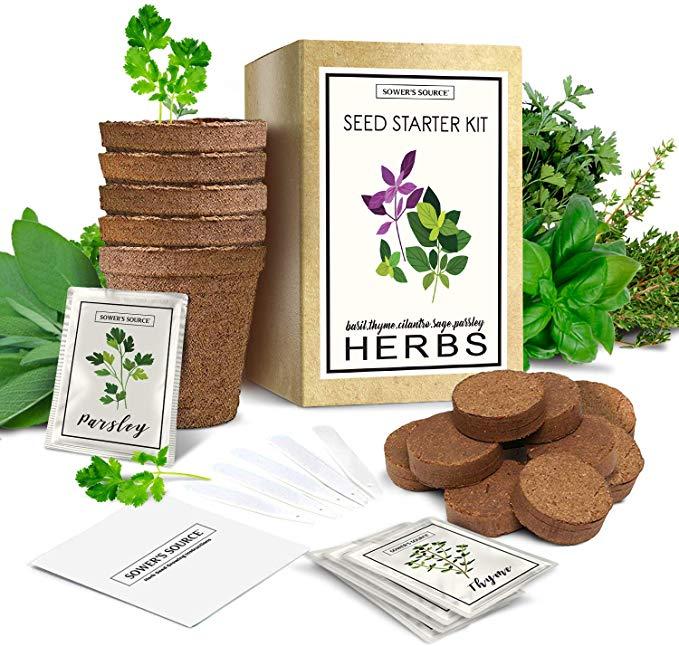 Herb Garden Starter Kit (Indoor) Natural