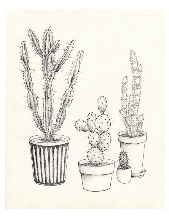 Noir Blanc Cactus Collection I Giclée Figue De Barbarie
