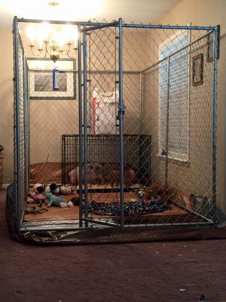 Pin On Indoors: Indoor Housing Examples