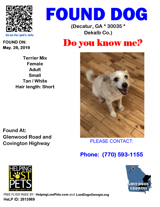 Do You Know This Dog Decatur Glenwood Road Covington Highway