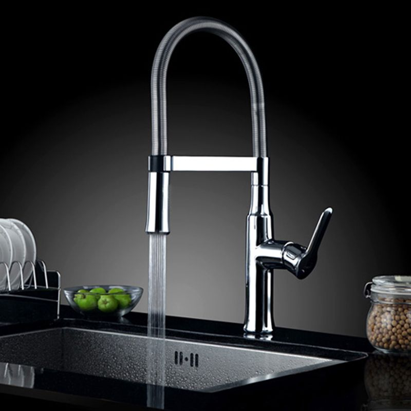Bouck Single Handle Kitchen Sink Faucet with Pull Out Sprayer ...