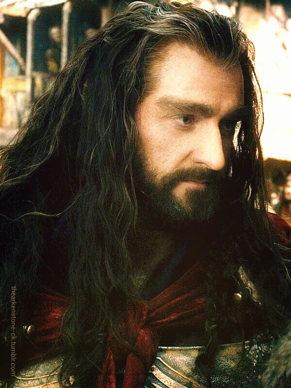 You cannot tell me that Thorin Oakenshield is not handsome! If you think he isn't you are clearly blind!