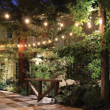 Feit Electric String Lights Classy Feit Electric Outdoor Weatherproof String Light Set  48 Feet Long Design Inspiration