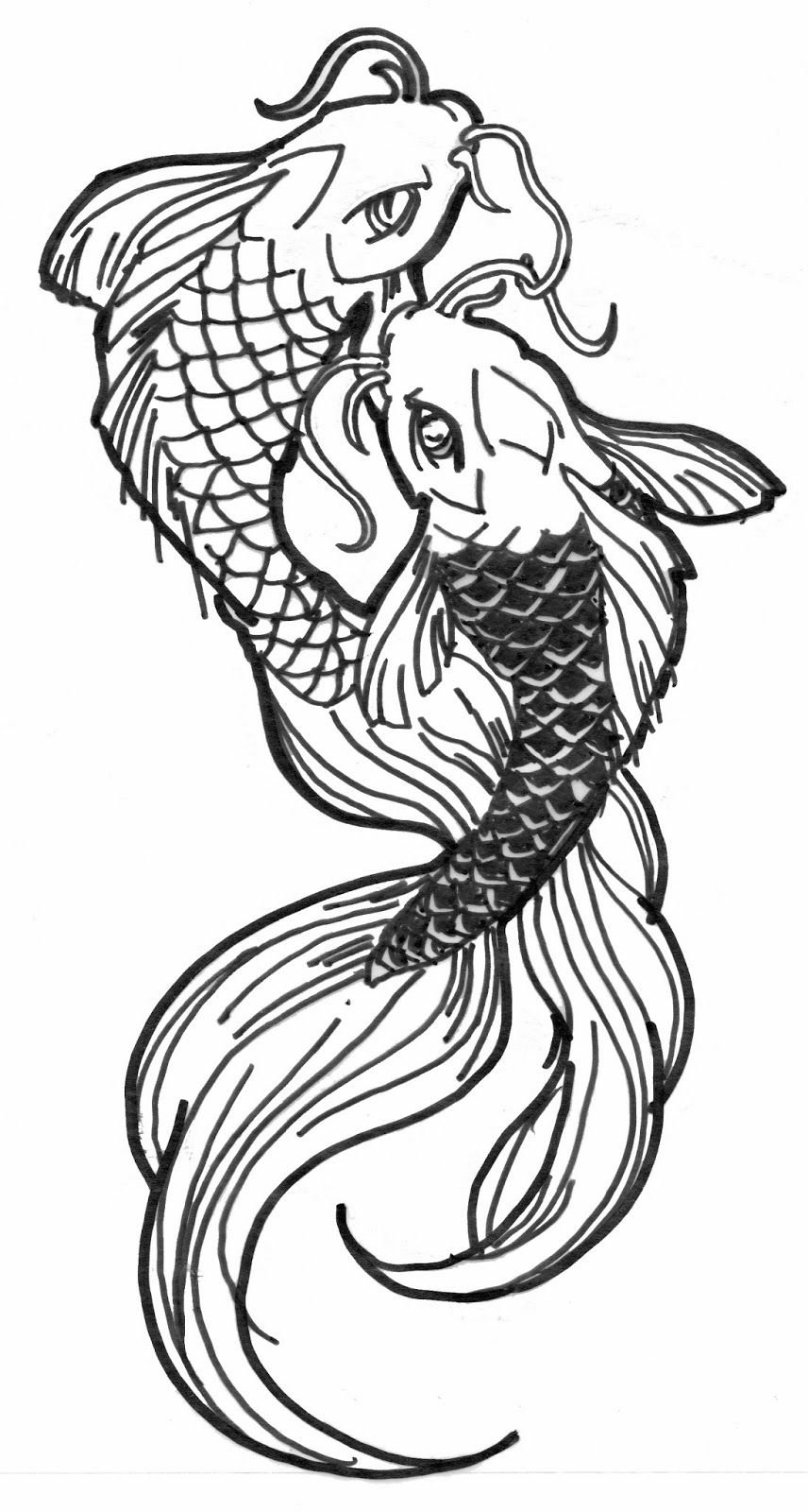Koi fish drawings koi fish drawing outline from the thin for Koi fish outline