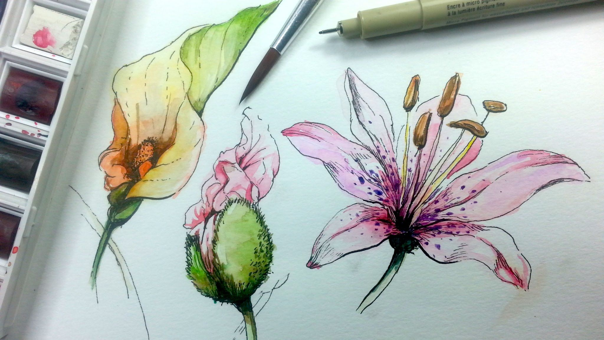 Flower · How To Draw And Paint Flowers With
