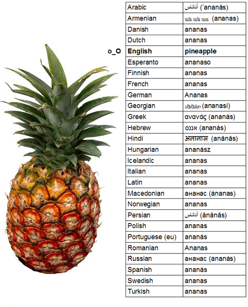 It S Only Ananas In Argentinean Spanish Pina Everywhere Else But Point Taken English Is So Weird P Pineapple Hilarious Language