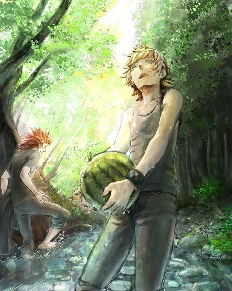 Axel & Roxas casually pickin' up watermelons. Using this for something.