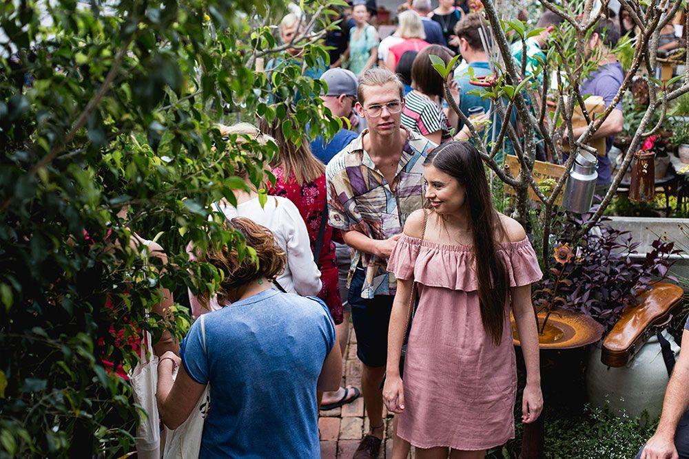 Vieille Branche Market Albion Must do Brisbane