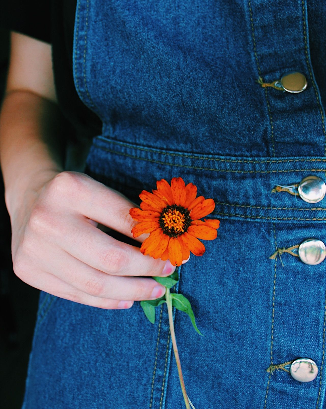 Pin By Blaire Haley On Photo Inspo Art Hoe Aesthetic Flower Aesthetic Hand Photography