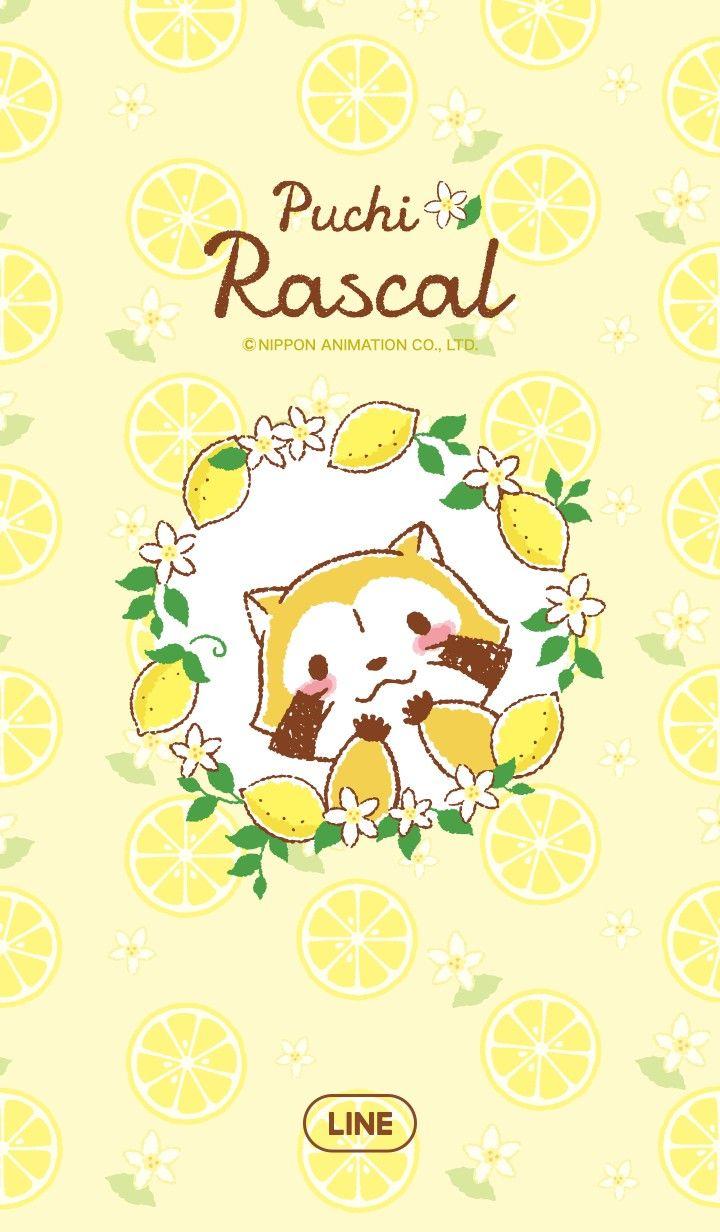Rascal Line Wallpaper 可愛いイラスト イラスト