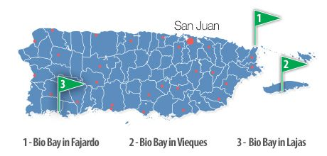 Three Different Bioluminescent Bays In Puerto Rico Best Time To - Us Map And Puerto Rico