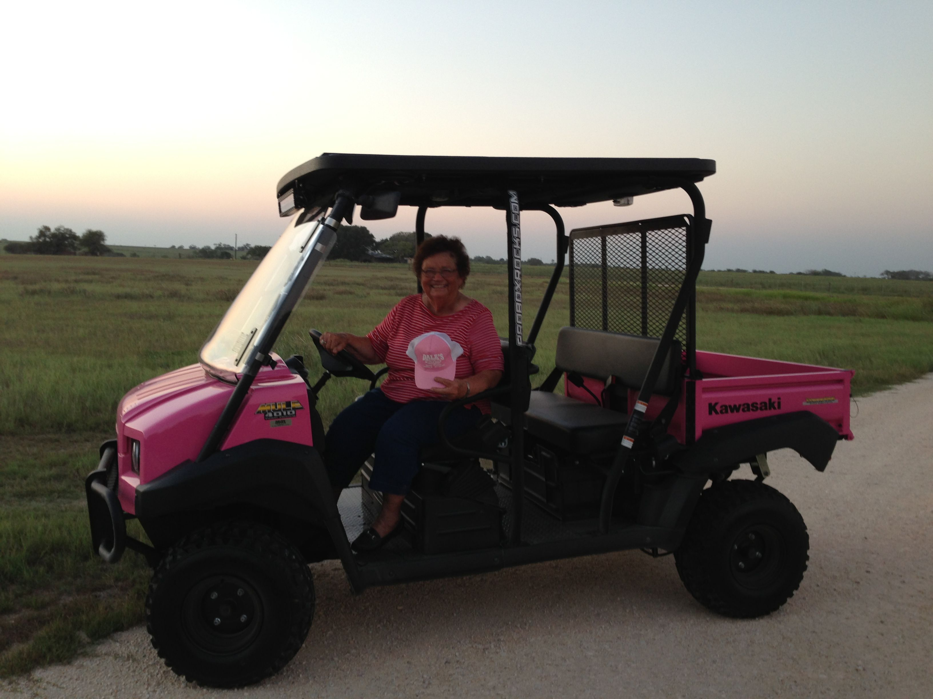 Custom Paint On A Kawasaki 4010 Mule In Hot Pink Kawasaki Mules