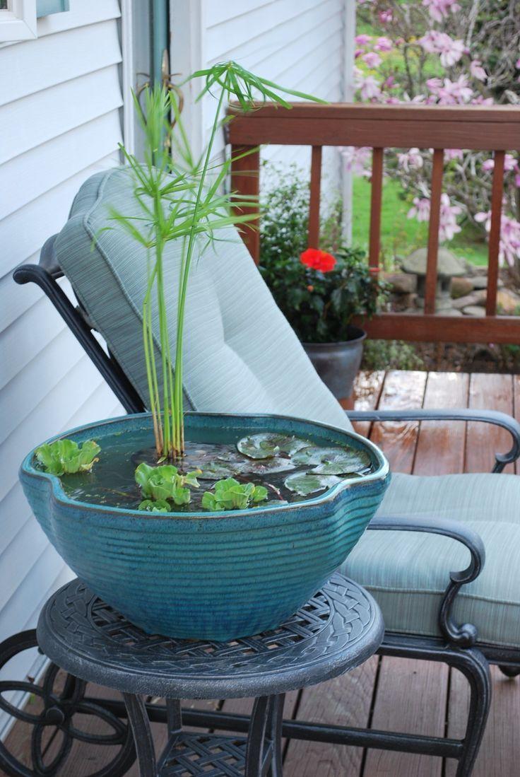 Balkon Ideen selber Machen: Ein Mini-Teich im Topf - Stephan K #balconyideas