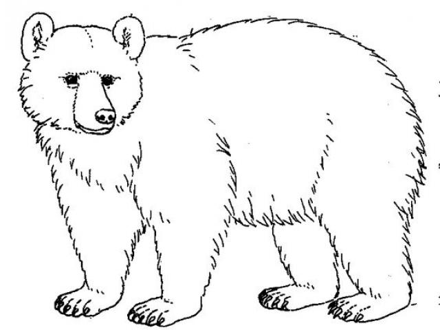 bear baws comic Saferbrowser Image Search Results in