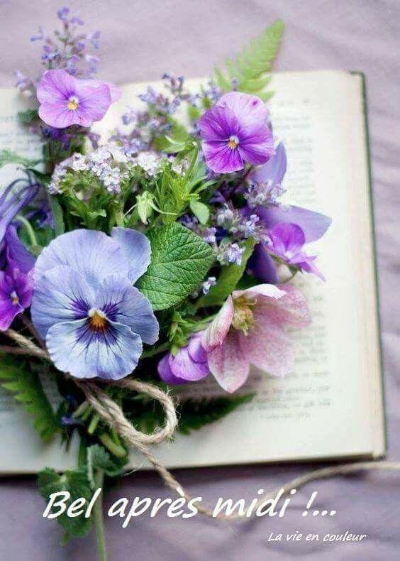 """Résultat de recherche d'images pour """"belle petite fleurs de printemps"""""""