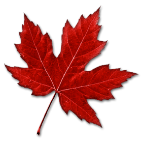 Download Hummus Png Images Background Png Free Png Images Autumn Leaves Art Canada Leaf Maple Leaf Tattoos