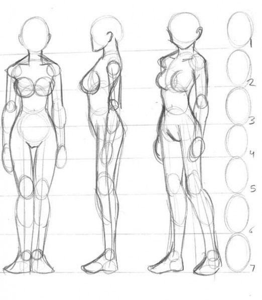 Aprende A Dibujar Cuerpos Humanos Paso A Paso Dibujo Referencia Anatomia Humana En 2020 Arte Del Cuerpo Humano Bocetos Del Cuerpo Humano Como Dibujar Cuerpo Anime