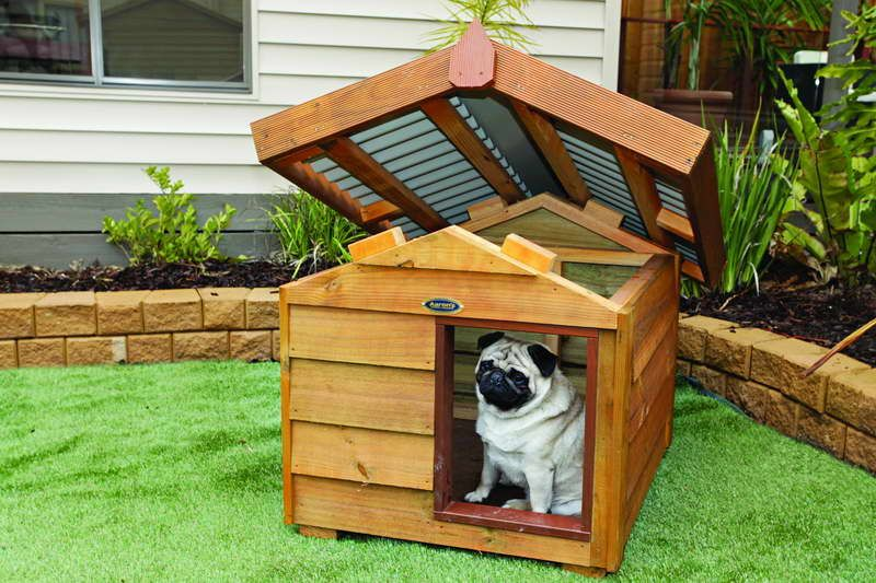 excellent inspiration ideas cool cat houses. Indoor  Dog Houses Luxury With Unique Roof House Designs For Dogs Design along with Indoors thats why if at this time you are looking for Awesome home or