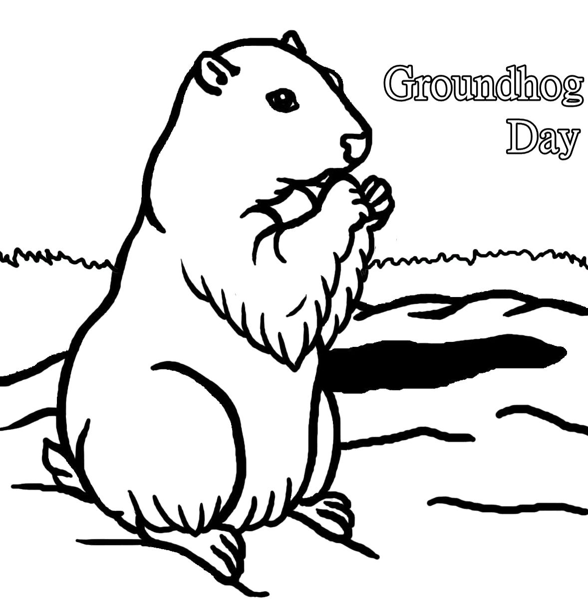 A Cute Groundhog The Animal Coloring Pages Animal Coloring Pages Coloring Pages Groundhog Day [ 1200 x 1178 Pixel ]