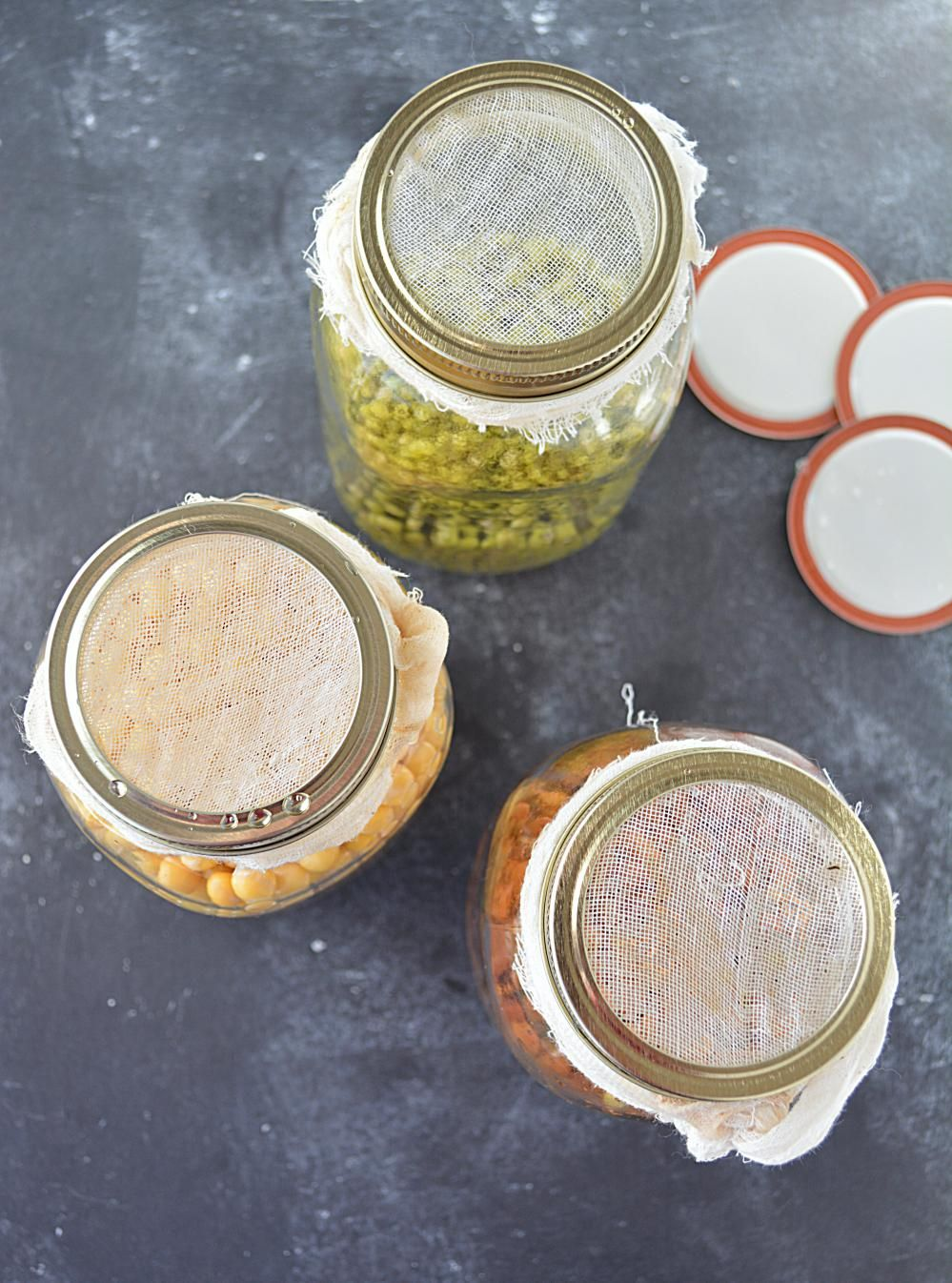 HOW TO MAKE SPROUTS IN A JAR How to make sprouts, Bean