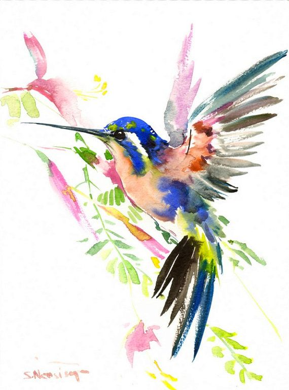 Bird Painting Hummingbird Original Watercolor 12 X 9 In