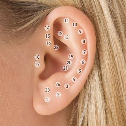 Potential ear Piercing Spots | Piercings, Ear piercings, Cute ear ...