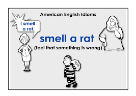 Image result for Easy everyday English idioms with images