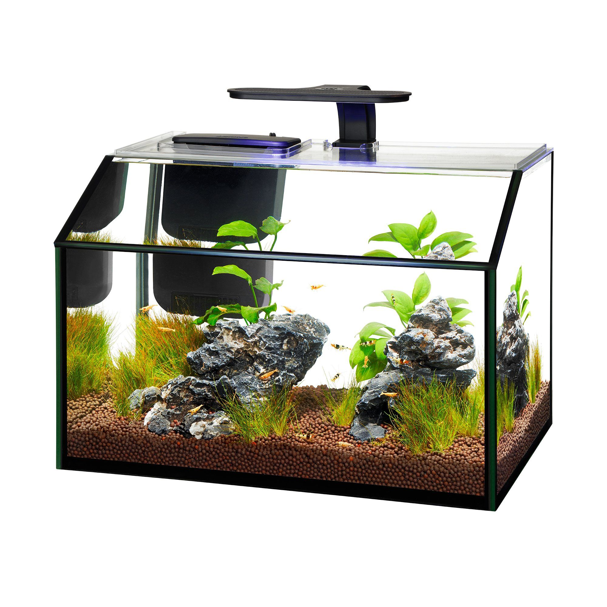 Aqueon LED 8.75 Gallon Shrimp Aquarium Kit | Petco ...
