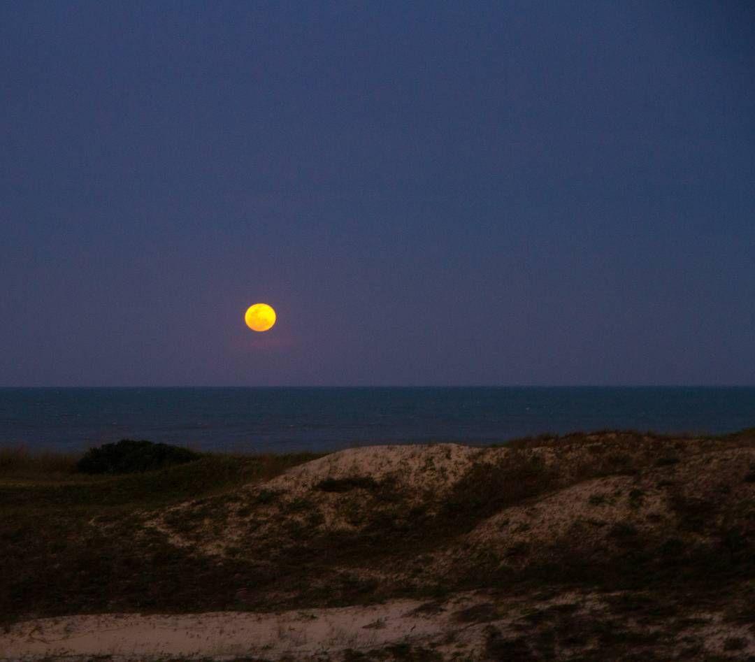 "Lua Cheia - Rio Tavares - Floripa - • LAIZ ALIONÇO (@laizfotografia) no Instagram: ""Night 🌕 #laizfotografia #reefifi #floripa #florianopolis #moon #lua #night #quintal"""