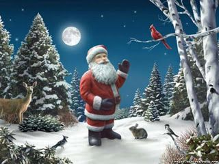 High quality Santa Claus image with bird