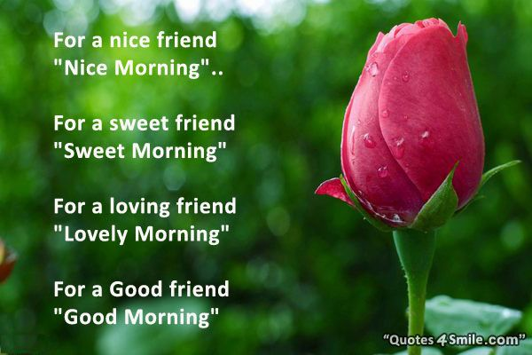 40 Funny Good Morning Quotes And Sayings Good Morning Quotes