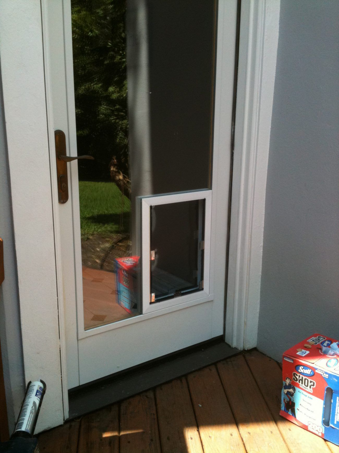 San Antonio Dog Doors In Glass Installation Gallery With Dog Door