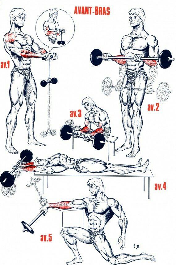 ejercicios para antebrazos con pesas