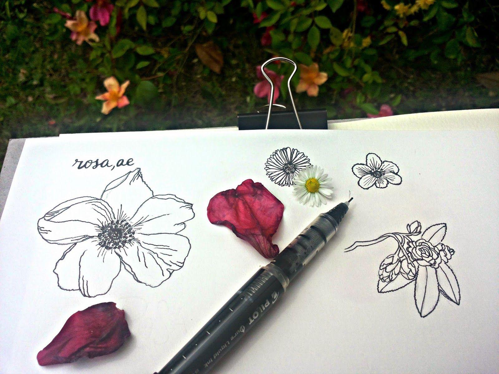 Born to be a wildflower: The Big Draw: la creatività a Firenze