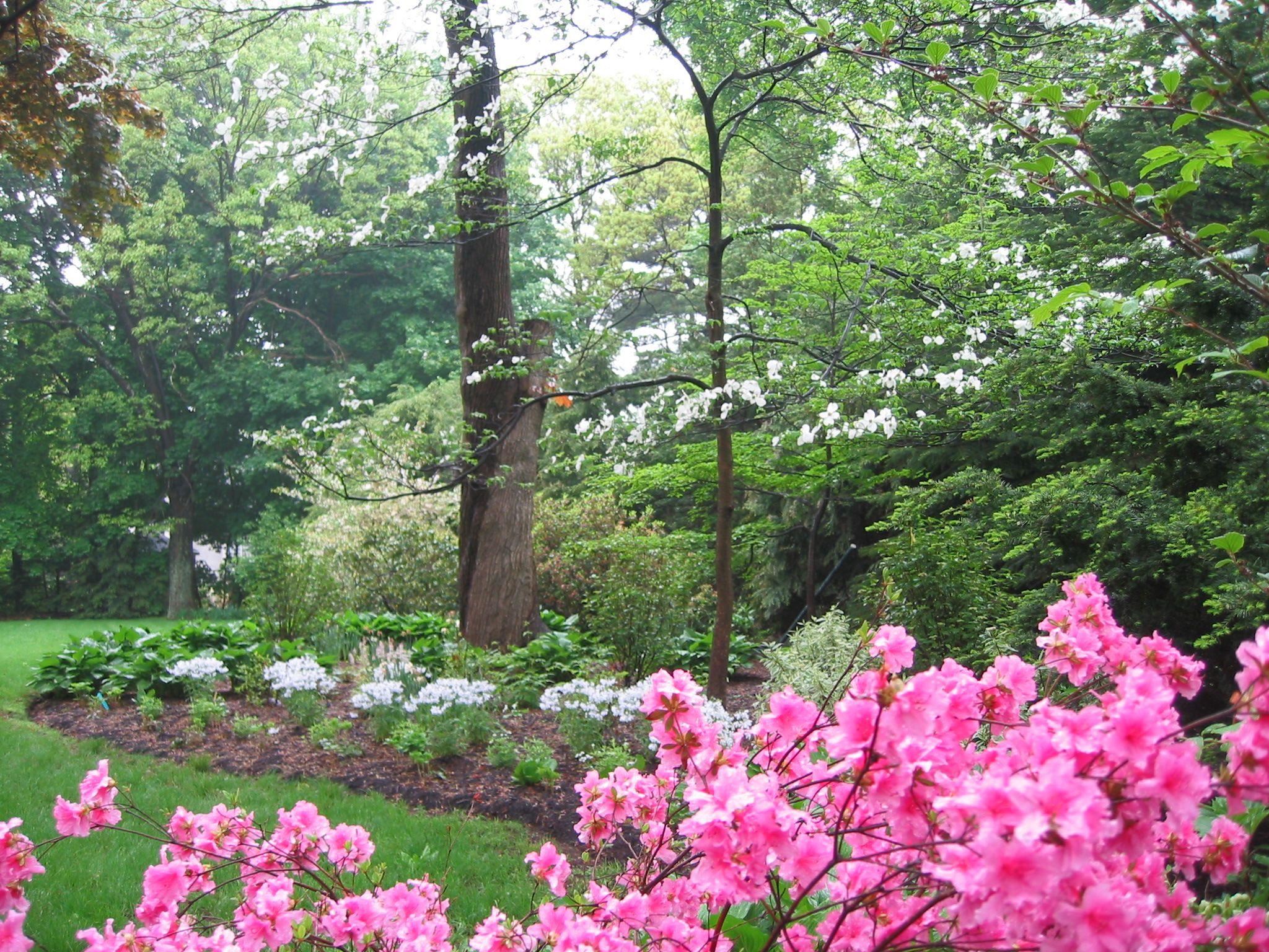Perennial Gardens Planting Roger B Sturgis Associates Landscaping Framingham Landscape Design Services Plants Woodland Garden