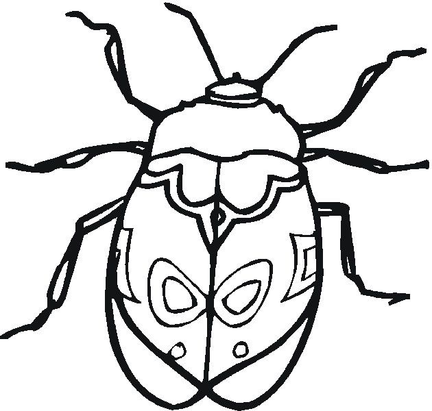 Insects Coloring Pages Printable Insect Coloring Pages Bug