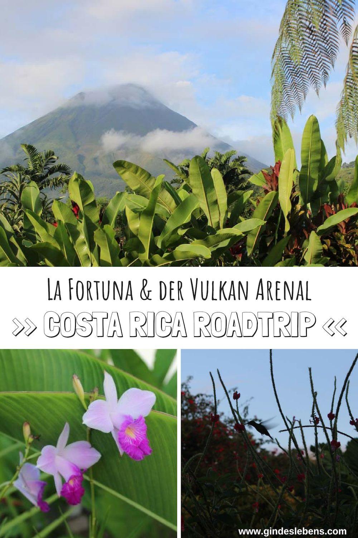 Volcano Lodge Springs Hoteltipp In La Fortuna Costa Rica Reisen Reise Inspiration Und Fernreiseziele