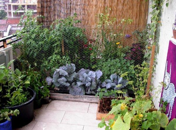 Fresh Balkon Garten Ideen f r Balkonsichtschutz mit Paravent oder Wand