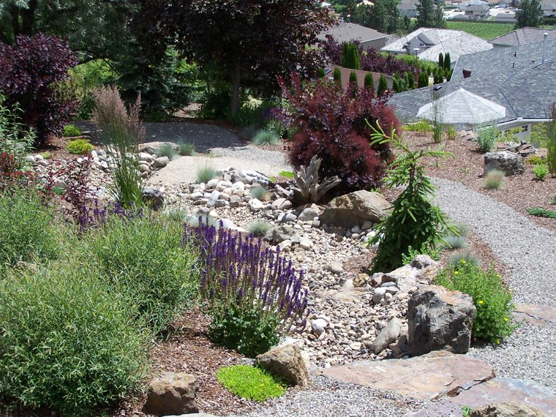 Dry creek bed landscaping designs synergy landscape for Dry landscape design