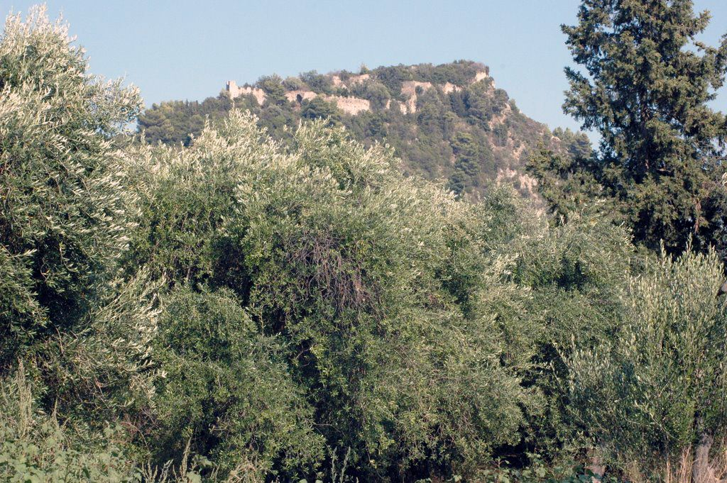 Αποτέλεσμα εικόνας για το κάστρο της ρηνιάσας