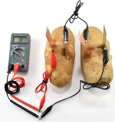 potato clock science fair project Procedure: we insert copper and zinc electrodes in to the potato, close but not touching each other we use clip leads to connect our electrodes to the multimeter to measure voltage between two electrodes or current passing through the multimeter.