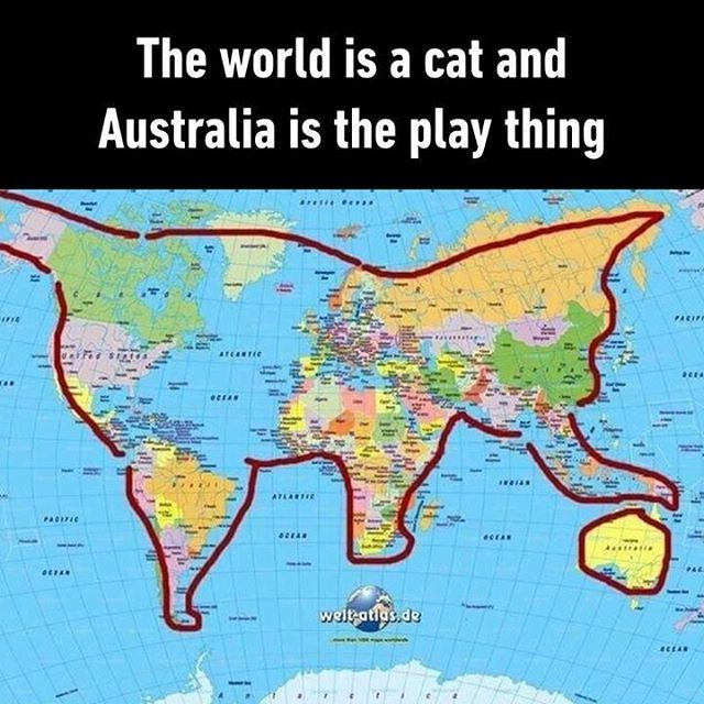 187234482406059997602757704406833435246592ng 640640 cats world map cat playing ball gumiabroncs Image collections
