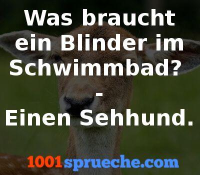 Flachwitze (197 +) Extrem Flach | Nonsens | Zum Totlachen