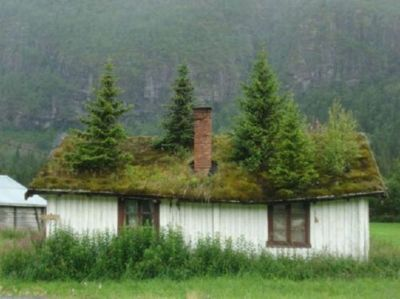 All The Pretty Distractions Green Roof House Norwegian Architecture Roof Landscape