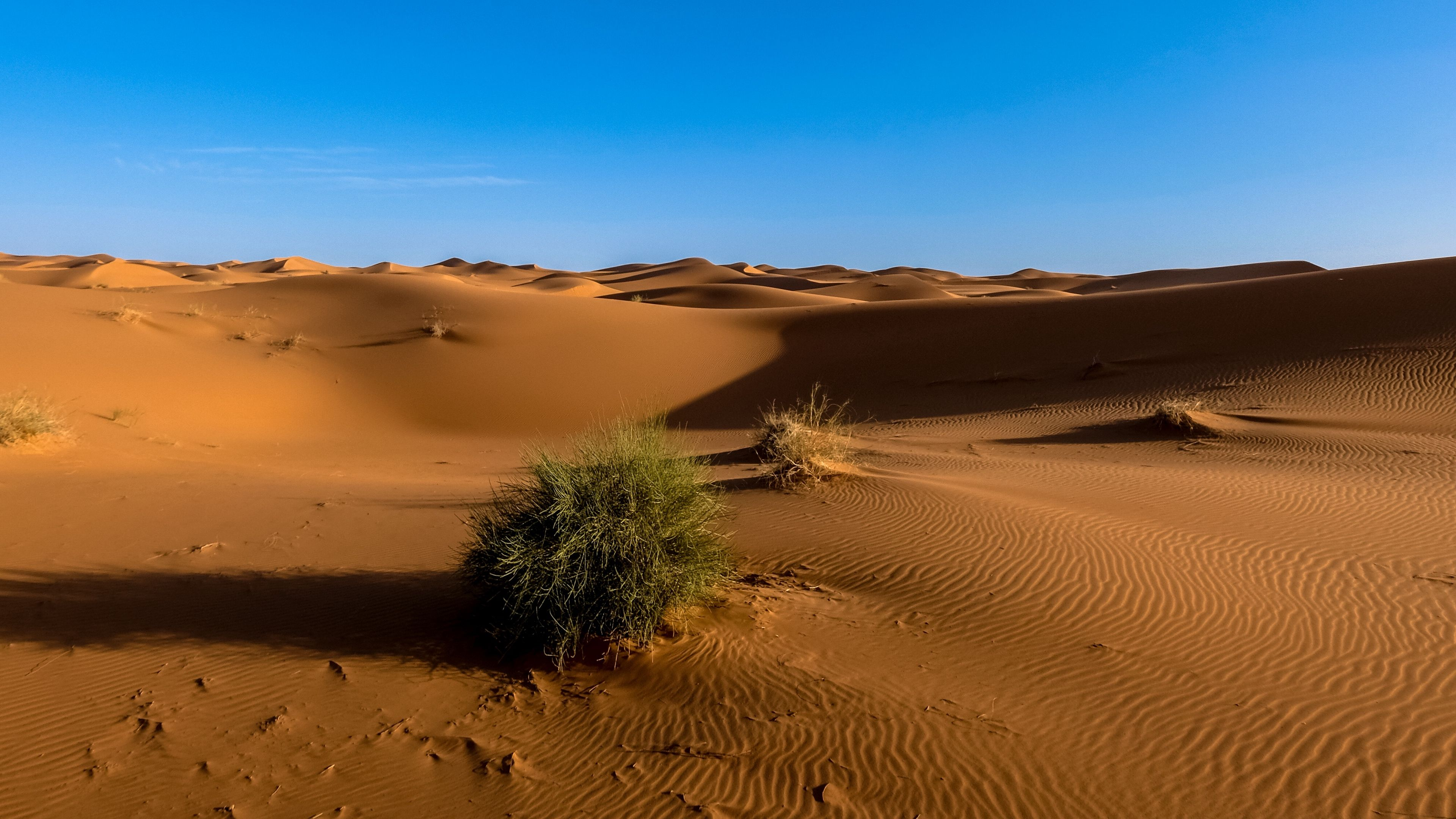 Sahara Desert Sand Sky 4k Sand Sahara Desert Wallpaper Earth Heart Wallpaper Nature Wallpaper