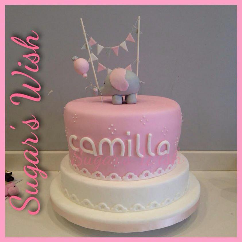 Torta per il primo compleanno di Camilla!